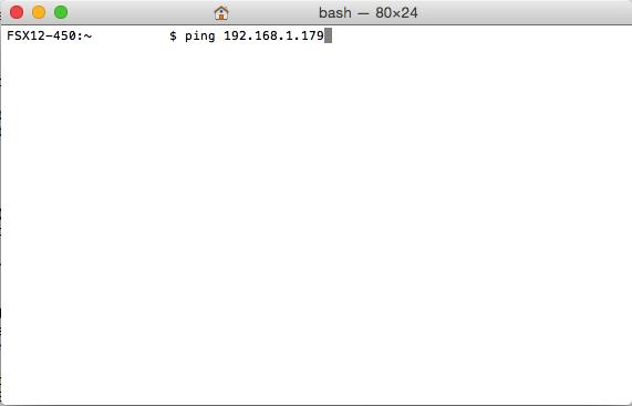 mac ping ip address